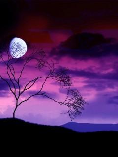 Purple Nature Mobile Wallpaper