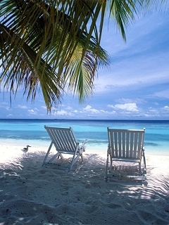 Best View Nature And Chair Beach Wallpaper Mobile Wallpaper