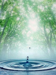 Water Drops Mobile Wallpaper