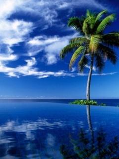 Blue Beach Mobile Wallpaper