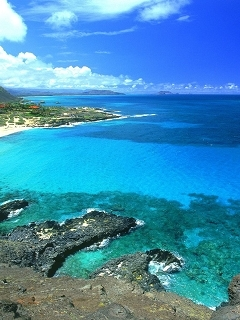 Blue Nature Island Mobile Wallpaper