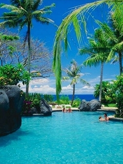 Island Home And Pool Mobile Wallpaper