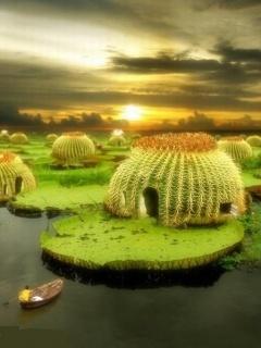 Cactus Pond Mobile Wallpaper