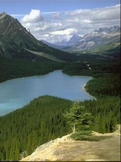 Lake And Mountain Mobile Wallpaper