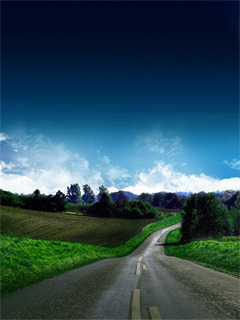 Road And Nature Mobile Wallpaper