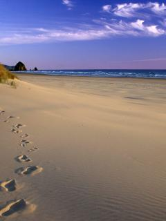 Footsteps On Beach Mobile Wallpaper