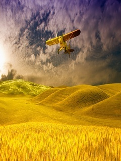 Yellow Field Mobile Wallpaper