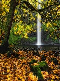 Autumn Waterfall Mobile Wallpaper