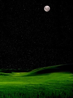 Green And Dark Sky Mobile Wallpaper
