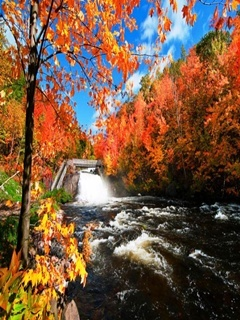 Autumn River Mobile Wallpaper