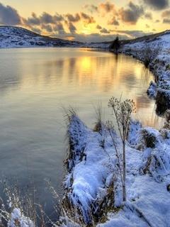 Winter Lake Mobile Wallpaper
