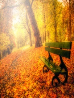 Autumn Bench Mobile Wallpaper