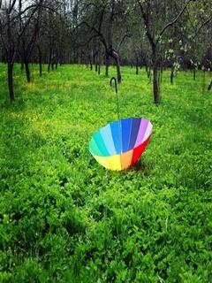 Umbrella Mobile Wallpaper