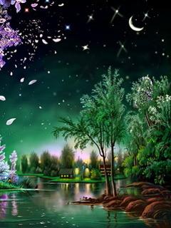 Beautiful Night Mobile Wallpaper