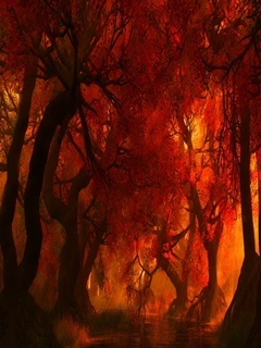 Fire Forest Mobile Wallpaper