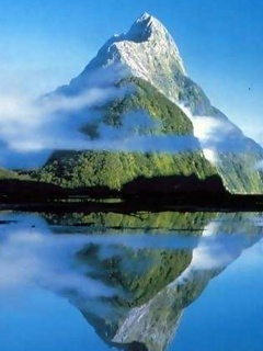 Reflection Nature Mobile Wallpaper