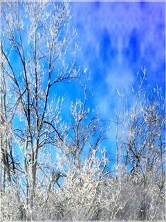 Winter Blue Mobile Wallpaper