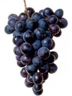 Grapes Mobile Wallpaper