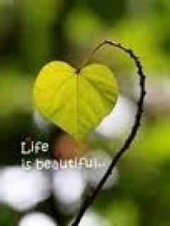 Life Is Beautiful Mobile Wallpaper
