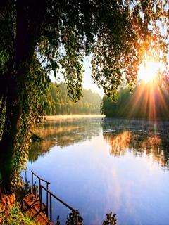 Sunrise River Mobile Wallpaper