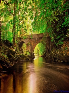 River Bridge Mobile Wallpaper