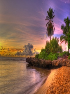 Evening And Beach Mobile Wallpaper