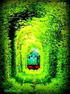 Train On Green Mobile Wallpaper
