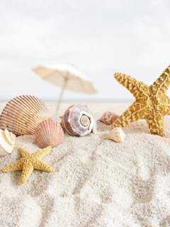 Beach Bliss Mobile Wallpaper