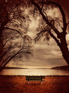 Waiting Bench Mobile Wallpaper