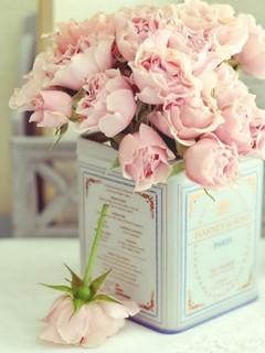 Pink Roses  Mobile Wallpaper