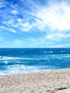 Summer Sea Mobile Wallpaper