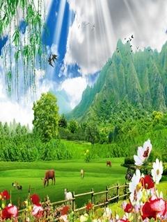 Nature Field Mobile Wallpaper