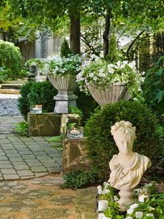 White Petunais Garden Mobile Wallpaper