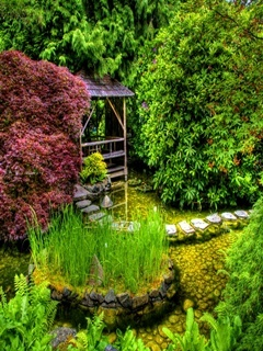 Garden Nature Mobile Wallpaper