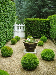 Green Garden Mobile Wallpaper