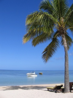 Beach Mauritius Mobile Wallpaper