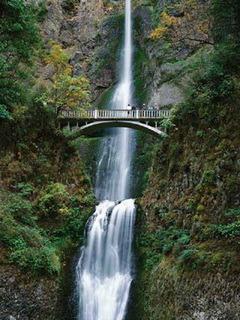 Water Fall Mobile Wallpaper