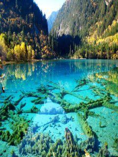 Crystalline Turquoise Lake Mobile Wallpaper