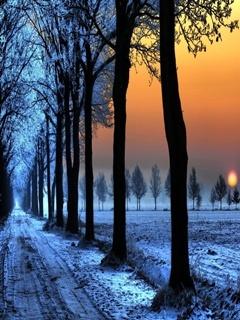 Snow Sunset Mobile Wallpaper