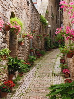 French Town Garden Mobile Wallpaper