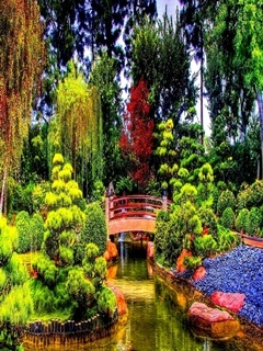 Beautiful Garden Mobile Wallpaper
