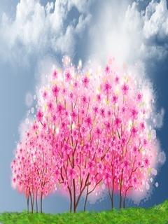 Sakura Mobile Wallpaper