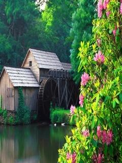 Water Mill Mobile Wallpaper
