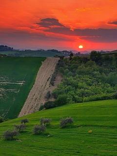 Tuscany Mobile Wallpaper