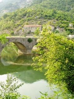 Bridge Green View Mobile Wallpaper