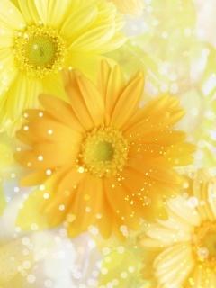 Nice Yellow Flowers Mobile Wallpaper