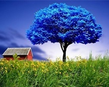 Blue Tree Mobile Wallpaper