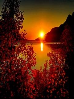 Sunset Amazing Mobile Wallpaper