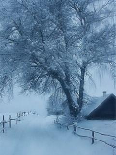 Winter City Mobile Wallpaper
