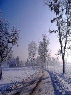 Morning Winter  Mobile Wallpaper